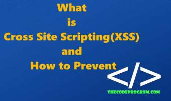 What is Cross Site Scripting(XSS) and How to Prevent
